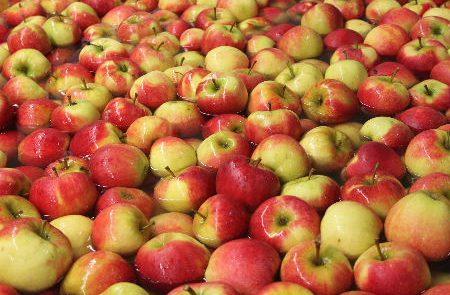 DCS Automatic voor de beste fruit kwaliteit