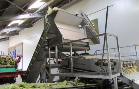 Ontwikkeling van een suikermaïskolven ontbladermachine voor de versmarkt