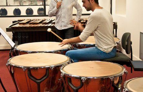 Visualisatie van geluid en trillingen in slag- en blaasinstrumenten