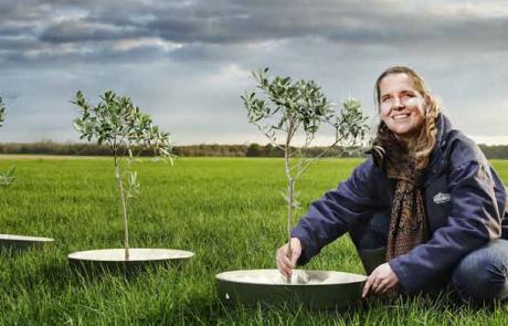 Ontwerp en proefproductie van de Bio-WaterBoxx voor stimulering van boomteelt