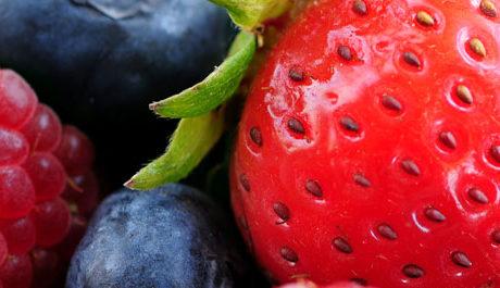 Natuurlijke stikstof bemesting vervangt kunstmest