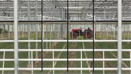 Agro-innovatie