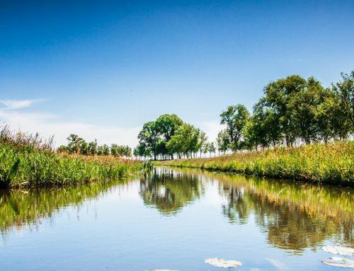Nieuwe openstelling: Herstel- en inrichtingsmaatregelen watersysteem