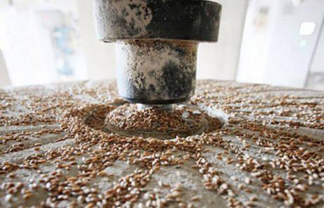 Ontwikkeling productielijn biologisch roggebrood zonder conserveringsmiddelen